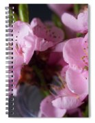 Pink Cherry Blossom Spiral Notebook