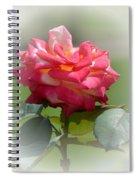 Pink Chiffon Ruffles Spiral Notebook