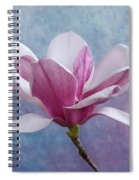 Pink Chinese Magnolia Flower Spiral Notebook