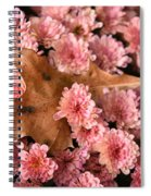 Pink Chrysanthemums With Pin Oak Leaf Spiral Notebook