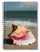 Pink Conch  Spiral Notebook