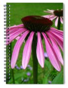 Pink Cone Flowers Spiral Notebook