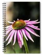 Pink Coneflower Spiral Notebook