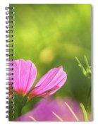 Pink Cosmos Spiral Notebook