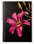 Pink Daylily Spiral Notebook