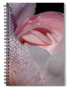Pink Dew Spiral Notebook