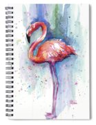 Pink Flamingo Watercolor Spiral Notebook