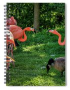Pink Flamingos And Imposters Spiral Notebook