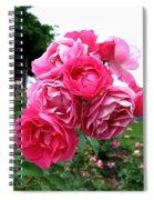 Pink Floribunda Roses Spiral Notebook