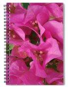 Pink Flower Composition Spiral Notebook
