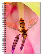 Pink Flower Fly Spiral Notebook