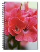Pink Flower Spiral Notebook