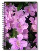Pink Flowers. 6-22-17 Spiral Notebook