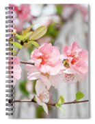Pink Flowers And A White Picket Fence Spiral Notebook