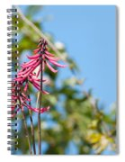 Pink Flowers At Coba Spiral Notebook
