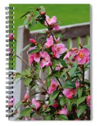 Pink Flowers By The Bench Spiral Notebook