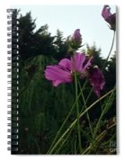 Pink Flowers In Front Of Trees Spiral Notebook