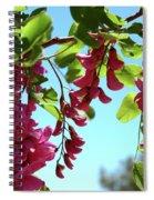 Pink Flowers Virginia City Nv Spiral Notebook