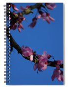 Pink Flowers With A Touch Of Ice Spiral Notebook
