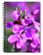 Pink Flowers With Bee . 40d4803 Spiral Notebook