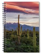 Pink Four Peaks Sunset  Spiral Notebook