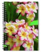 Pink Frangipani Spiral Notebook