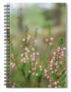 Pink Heather, Calluna Vulgaris, In Foggy Forest Spiral Notebook