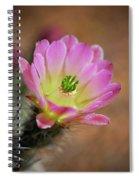 Pink Hedgehog Cactus Spiral Notebook