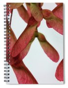 Pink Helicopters Spiral Notebook
