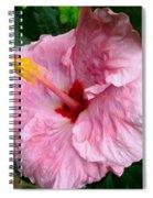 Pink Hibiscus Flower 1 Spiral Notebook