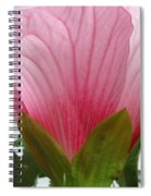 Pink Hibiscus Ready To Bloom Spiral Notebook