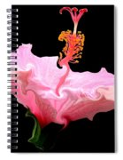 Pink Hibiscus With Curlicue Effect Spiral Notebook