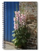Pink Hollyhocks Growing From A Crack In The Pavement Spiral Notebook