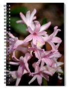 Pink Hyacinth Spiral Notebook