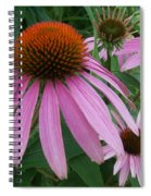 Pink In The Garden Spiral Notebook