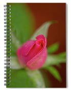 Pink Knockout Rose Spiral Notebook