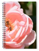 Pink Lady - Rose Spiral Notebook