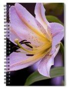 Pink Lilly Spiral Notebook