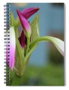 Pink Lily Bud Spiral Notebook