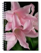 Pink Lily Flowers Spiral Notebook