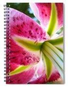 Pink Lily Summer Botanical Garden Art Prints Baslee Troutman Spiral Notebook