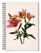 Pink Lily Trio Spiral Notebook