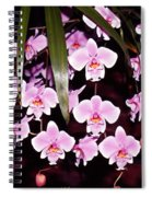 Pink Little Orchids Spiral Notebook