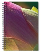 Pink Lotus Bud Spiral Notebook