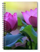 Pink Lotus Spiral Notebook