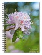 Pink Love 6 Spiral Notebook
