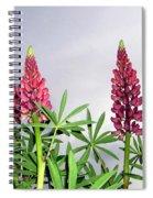 Pink Lupins Spiral Notebook