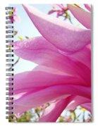 Pink Magnolia Flower Art Print Botanical Tree Baslee Troutman Spiral Notebook