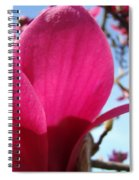 Pink Magnolia Flowers Magnolia Tree Spring Art Spiral Notebook