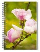 Pink Magnolia Triptych Spiral Notebook
